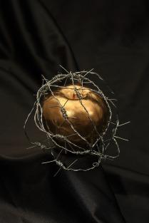 apple-2980044_1920