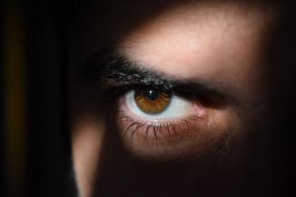 eye-2488227_1920